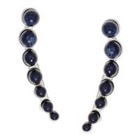 Nine West Trail Mixer Blue Crawler Earrings
