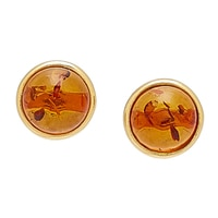 Amber Extraordinaire Sterling Silver Amber Stud Earrings