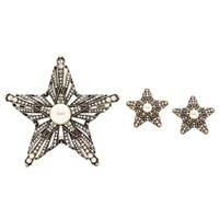 Heidi Daus Star of the Show Pin & Earrings Set