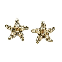 Heidi Daus Star Worthy Earrings