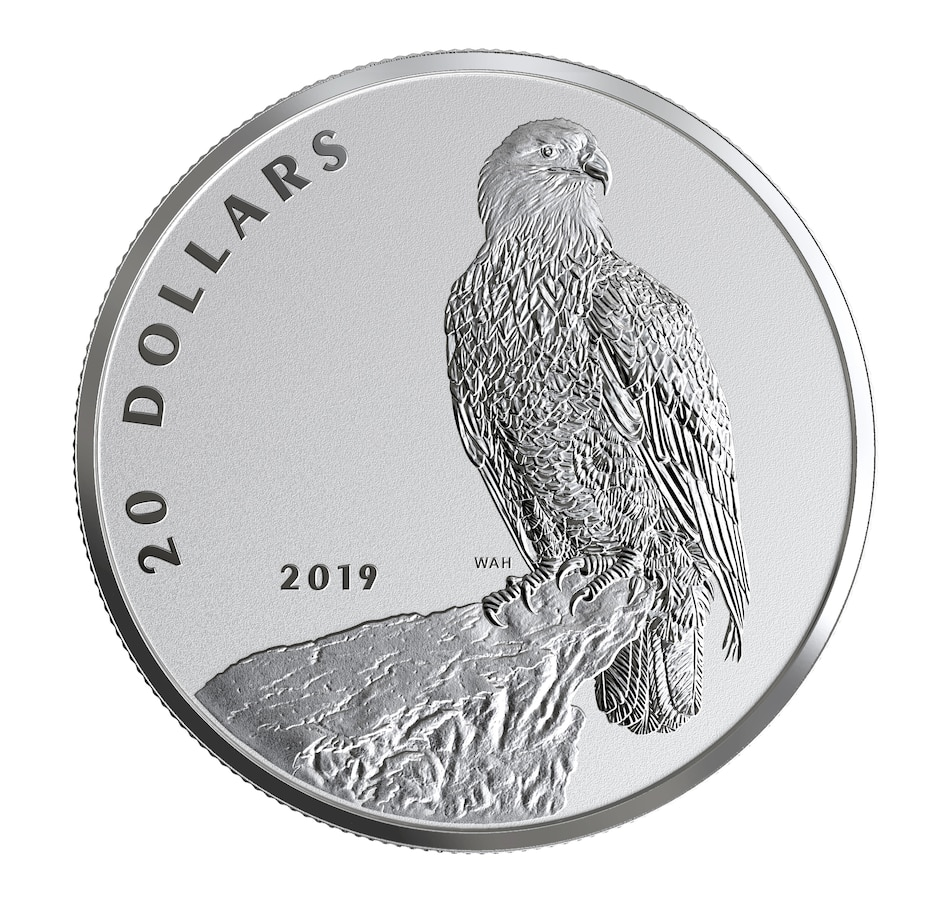 Image 554785.jpg , Product 554-785 / Price $89.95 , 2019 $20 Fine Silver Proof Coin - The Valiant One: Bald Eagle from Royal Canadian Mint on TSC.ca's Coin department