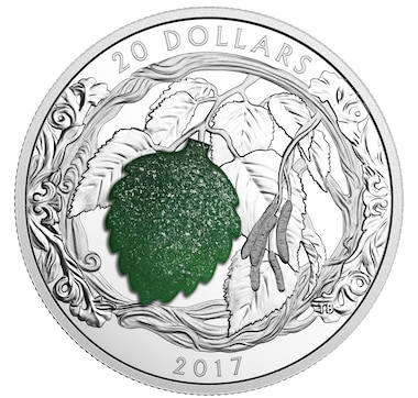 $20 Fine Silver Coin Brilliant Birch Leaves with Drusy Stone