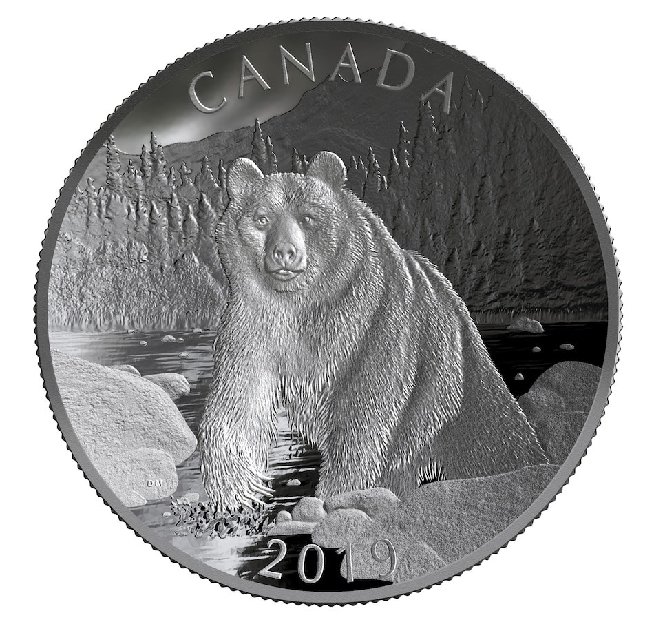 Image 666686.jpg , Product 666-686 / Price $999.95 , 2019 $100 Ten-Ounce Piedfort Fine Silver Coin Nature's Grandeur: Brown Bear Double Concave from Royal Canadian Mint on TSC.ca's Coin department