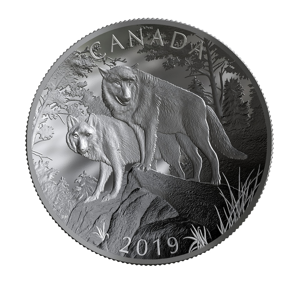 Image 666919.jpg , Product 666-919 / Price $999.95 , 2019 $100 Ten-Ounce Piedfort Fine Silver Coin Nature's Grandeur: Wolves (Double Concave; 500 Mintage) from Royal Canadian Mint on TSC.ca's Coin department