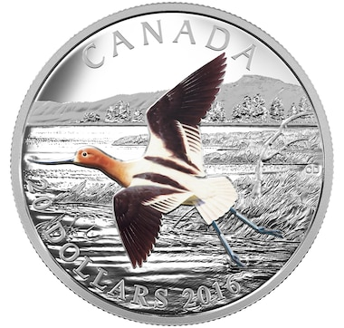 $20 Proof Fine Silver Coin - American Avocet